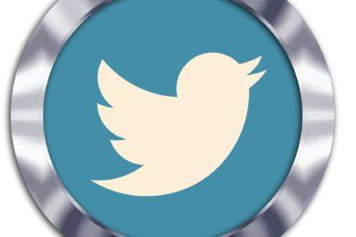 Dieses Foto zeigt das Twitter-Symbol in einem metallisch wirkenden Rahmen.